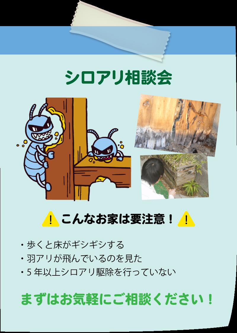仙台のリフォーム専門店 DAIKUダイク 参加無料 シロアリ相談会