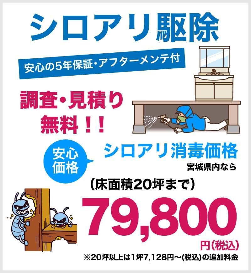 仙台のリフォーム専門店 ダイクショールーム 床下 シロアリ駆除